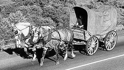 Conestoga Wagon (34Kb): Mennonite Archives of Ontario (1988 - 7.4)